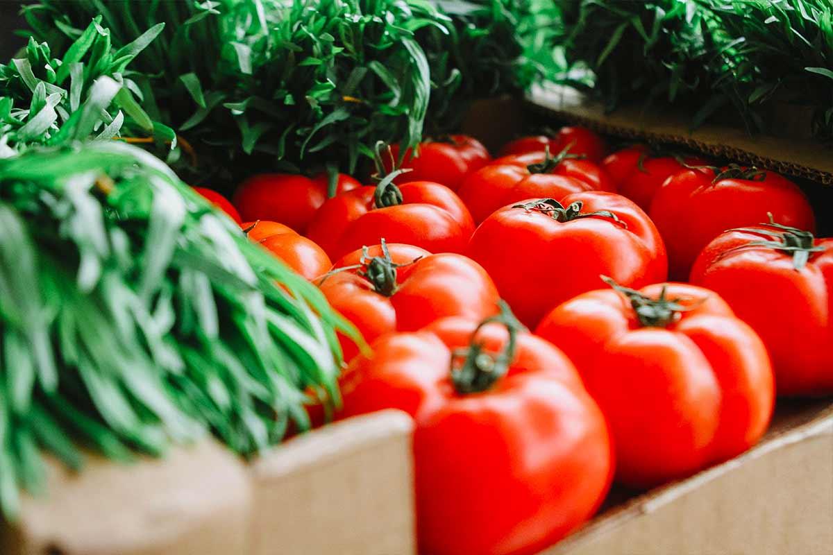 Pomodori: Benefici E Proprietà